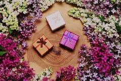 Πασχαλιές και κιβώτια δώρων στο ξύλινο υπόβαθρο Στοκ φωτογραφία με δικαίωμα ελεύθερης χρήσης