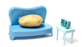 Πατάτα καναπέδων που προσέχει τη TV Στοκ εικόνες με δικαίωμα ελεύθερης χρήσης