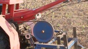 Πατάτα που συλλέγει τη μηχανή κατά την πλάγια όψη εργασίας απόθεμα βίντεο