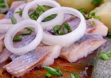 πατάτα ψαριών Στοκ φωτογραφίες με δικαίωμα ελεύθερης χρήσης