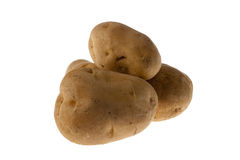 πατάτες ακατέργαστα τρία Στοκ Εικόνες