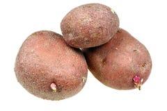 πατάτες ακατέργαστες Στοκ εικόνες με δικαίωμα ελεύθερης χρήσης