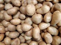 Πατάτες για την πώληση Στοκ φωτογραφία με δικαίωμα ελεύθερης χρήσης