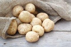 Πατάτες και Burlap Στοκ εικόνες με δικαίωμα ελεύθερης χρήσης