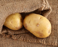 Πατάτες που ανατρέπουν από μια burlap τσάντα Στοκ φωτογραφία με δικαίωμα ελεύθερης χρήσης