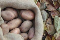 Πατάτες στην τσάντα Στοκ φωτογραφία με δικαίωμα ελεύθερης χρήσης