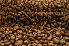 Πατάτες στην υπεραγορά με την αντανάκλαση καθρεφτών στοκ εικόνες με δικαίωμα ελεύθερης χρήσης
