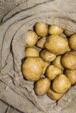 Πατάτες συγκομιδών burlap στο σάκο στο ξύλινο υπόβαθρο Στοκ Φωτογραφίες