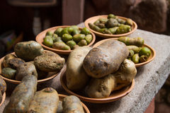 Πατάτες -4 Στοκ Εικόνες