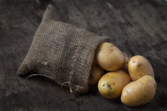 Πατάτες Στοκ Εικόνα