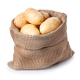 Πατάτες burlap στην τσάντα που απομονώνεται στο άσπρο υπόβαθρο Στοκ εικόνα με δικαίωμα ελεύθερης χρήσης