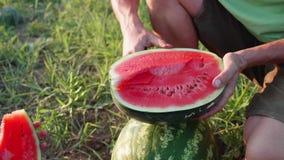 Πατέρας και γιος αγροτών που τρώνε το καρπούζι στον τομέα του οργανικού αγροκτήματος φιλμ μικρού μήκους