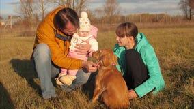 Πατέρας και κτυπημένο παιδιά χέρι του σκυλιού απόθεμα βίντεο