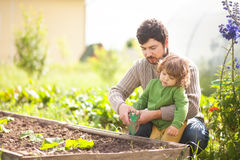 Πατέρας και κόρη που εργάζονται μαζί στον κήπο Στοκ Εικόνες