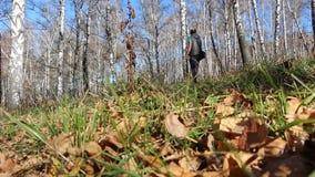 Πατέρας με την κόρη του στα χέρια που περπατούν στο δάσος φθινοπώρου φιλμ μικρού μήκους