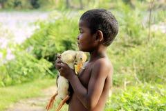 Πατρικό αίσθημα αγκαλιάζοντας το νεοσσό στοκ φωτογραφίες