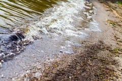 Παφλασμός νερού σε μια λίμνη Στοκ Εικόνες