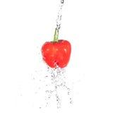 Παφλασμός ύδατος κόκκινων πιπεριών στοκ εικόνα