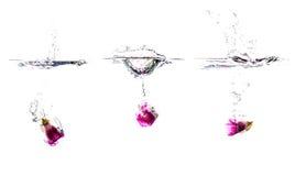 Παφλασμοί νερού με το παγωμένο λουλούδι στους κύβους Στοκ Φωτογραφίες