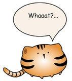 Παχιά γάτα που υποβάλλει μια ερώτηση στοκ εικόνα