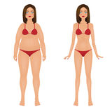 Παχιά και λεπτή γυναίκα στο κόκκινο μπικίνι Κορίτσι πριν και μετά από την απώλεια βάρους επίσης corel σύρετε το διάνυσμα απεικόνι διανυσματική απεικόνιση