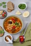 Παχιά κόκκινη σούπα με τα ζυμαρικά στοκ φωτογραφία