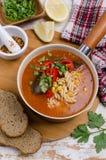 Παχιά κόκκινη σούπα με τα ζυμαρικά στοκ εικόνα με δικαίωμα ελεύθερης χρήσης