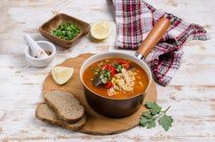 Παχιά κόκκινη σούπα με τα ζυμαρικά στοκ εικόνες
