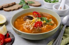 Παχιά κόκκινη σούπα με τα ζυμαρικά στοκ εικόνα