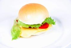 παχιά τρόφιμα Στοκ Εικόνα