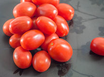 Παχουλές ντομάτες σταφυλιών στοκ φωτογραφίες