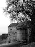 παχύς πύργος της Margaret Ταλίν στοκ φωτογραφία με δικαίωμα ελεύθερης χρήσης