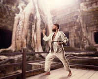 Παχύς karate μαχητής Στοκ Εικόνες