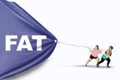 Παχύσαρκες γυναίκες που σέρνουν την παχιά λέξη Στοκ εικόνες με δικαίωμα ελεύθερης χρήσης