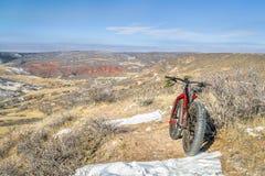 Παχύ ποδήλατο σε ένα ίχνος ερήμων στο βόρειο Κολοράντο στοκ φωτογραφία με δικαίωμα ελεύθερης χρήσης