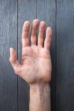 Παλάμη χεριών Στοκ Φωτογραφίες