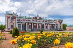 παλάτι Ταλίν της Εσθονίας Στοκ εικόνα με δικαίωμα ελεύθερης χρήσης