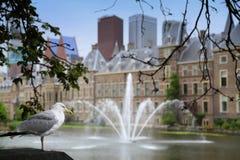 Παλάτι Binnenhof, ολλανδικό Parlament στη Χάγη, Κάτω Χώρες Στοκ Εικόνα