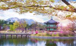 Παλάτι Gyeongbokgung την άνοιξη, Νότια Κορέα στοκ φωτογραφία με δικαίωμα ελεύθερης χρήσης
