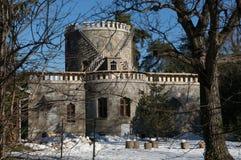 Παλάτι Hasdeu Iulia Στοκ Εικόνες