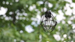 Παλαιά λάμπα φωτός με τους κλάδους του δέντρου απόθεμα βίντεο