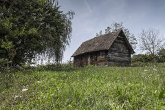 παλαιά δάση καμπινών Στοκ εικόνα με δικαίωμα ελεύθερης χρήσης