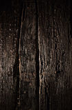 Παλαιά δάση Στοκ εικόνα με δικαίωμα ελεύθερης χρήσης