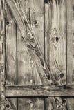 Παλαιά αγροτική πόρτα σιταποθηκών ξύλου πεύκων - λεπτομέρεια Στοκ Εικόνα