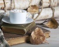 Παλαιά βιβλία πτώσης Cappuccino στοκ εικόνες με δικαίωμα ελεύθερης χρήσης