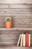 Παλαιά βιβλία σε ένα ξύλινο ράφι Στοκ Φωτογραφία