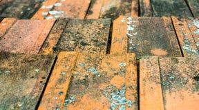 Παλαιά βρώμικα πορτοκαλιά κεραμίδια στεγών Στοκ Εικόνες