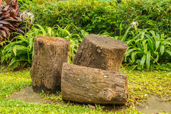 Κήπος γεφυρών ξυλείας. Στοκ φωτογραφίες με δικαίωμα ελεύθερης χρήσης