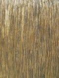 Παλαιά γκρίζα ξύλινη επιφάνεια του πίνακα, πάτωμα Στοκ Εικόνα