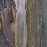 Παλαιά ηλικίας ξεπερασμένη grunge ξύλινη σύσταση χρώμα-φλούδας, λεπτομερής κάθετη μακρο κινηματογράφηση σε πρώτο πλάνο φυσικού κα Στοκ Εικόνες